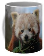 Beautiful Red Panda Coffee Mug
