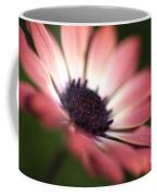 Beautiful Rich African Daisy Zion Red Flower Coffee Mug