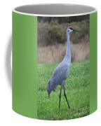 Beautiful Sandhill Crane Coffee Mug