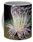 Beautiful Sea Anemone 1 Coffee Mug