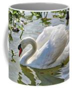 Beautiful Swan Coffee Mug