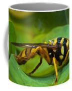 Beautiful Syrphid Coffee Mug