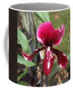 Beautiful Temptation 2 Coffee Mug