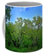 Beautiful Texas View 2 Coffee Mug