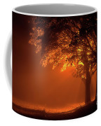 Beautiful Trees At Night With Orange Light Coffee Mug