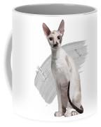 Beautiful Two-color Eyes Cornish Rex Coffee Mug