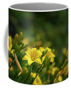 Beautiful Vibrant Yellow Lily Flower In Summer Sun Coffee Mug