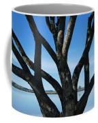 Beautiful Winters Day Coffee Mug
