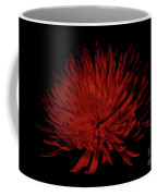 Beauty 2 Coffee Mug