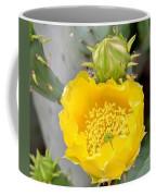 Beauty Begets Beauty Coffee Mug
