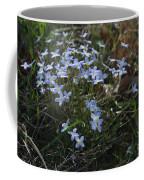 Beauty Blue Flowers Coffee Mug
