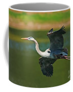 Beauty In Flight Coffee Mug