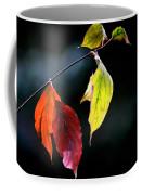 Beauty In Simplicity Coffee Mug