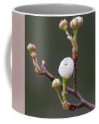 Beauty In The Emerging Coffee Mug