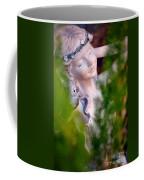 Beauty In The Ferns Coffee Mug