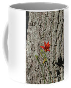 Beauty Is In The Details Coffee Mug