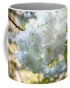 Beauty Is Transcendent Coffee Mug