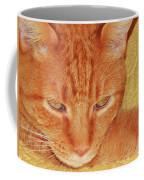 Beauty Of A Cat Coffee Mug