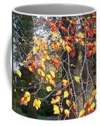 Beauty Of Fall Coffee Mug