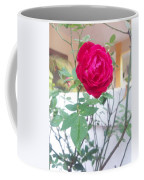 Beauty Of  Red Rose  Coffee Mug