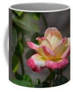 Beauty Unfolding Coffee Mug