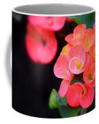 Beauty And Thorns Coffee Mug
