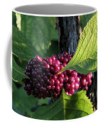 Beautyberry 2 Coffee Mug