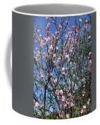Beautiful Spring. Blooming Tree 2 Coffee Mug