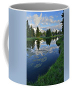 Beaver Dam At Schwabacher Landing Coffee Mug