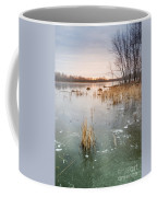 Beaver Place Coffee Mug