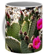 Beavertail Cactus Coffee Mug
