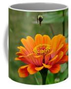 Bee Above Orange Zinnia Coffee Mug