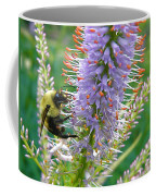 Bee And Its Lavender Delight Coffee Mug