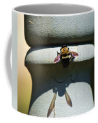 Bee And My Shadow Coffee Mug