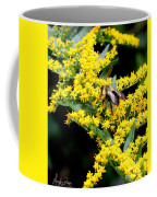 Bee In The Rawweed Coffee Mug