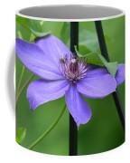 Bee On Bloom Coffee Mug