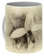 Bee On Citrus Flower Coffee Mug