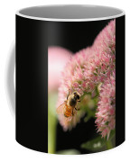 Bee On Flower 3 Coffee Mug