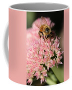 Bee On Flower 4 Coffee Mug