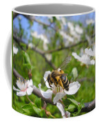 Bee On Flower On Tree Branch Coffee Mug