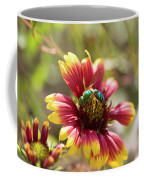 Bee On Gaillardia Coffee Mug