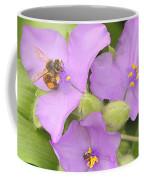 Bee On Purple Spiderwort Coffee Mug