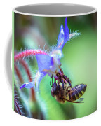 Bee On The Flower Coffee Mug