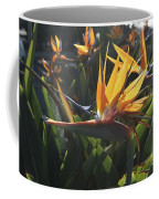 Bee Resting On The Petals Of A Bird Of Paradise  Coffee Mug