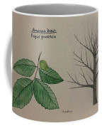 Beech Tree Id Coffee Mug