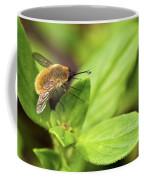Beefly Coffee Mug
