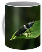 Beetle At Sunrise Coffee Mug