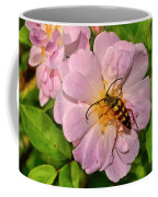 Beetle In A Rose 003 Coffee Mug