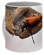 Beetle Pondering Coffee Mug