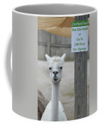 Begging Without A Word Coffee Mug
